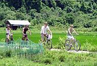 Đảo Cát Bà Phát Triển Du Lịch Sinh Thái, Cộng Đồng