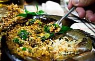 Gỏi Thịt Sam Biển - Đậm Đà Hương Vị Đảo Cát Bà